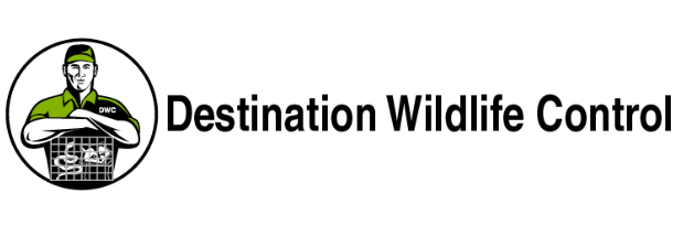 Nuisance Wildlife - Destination Wildlife Control - The Master Trapper